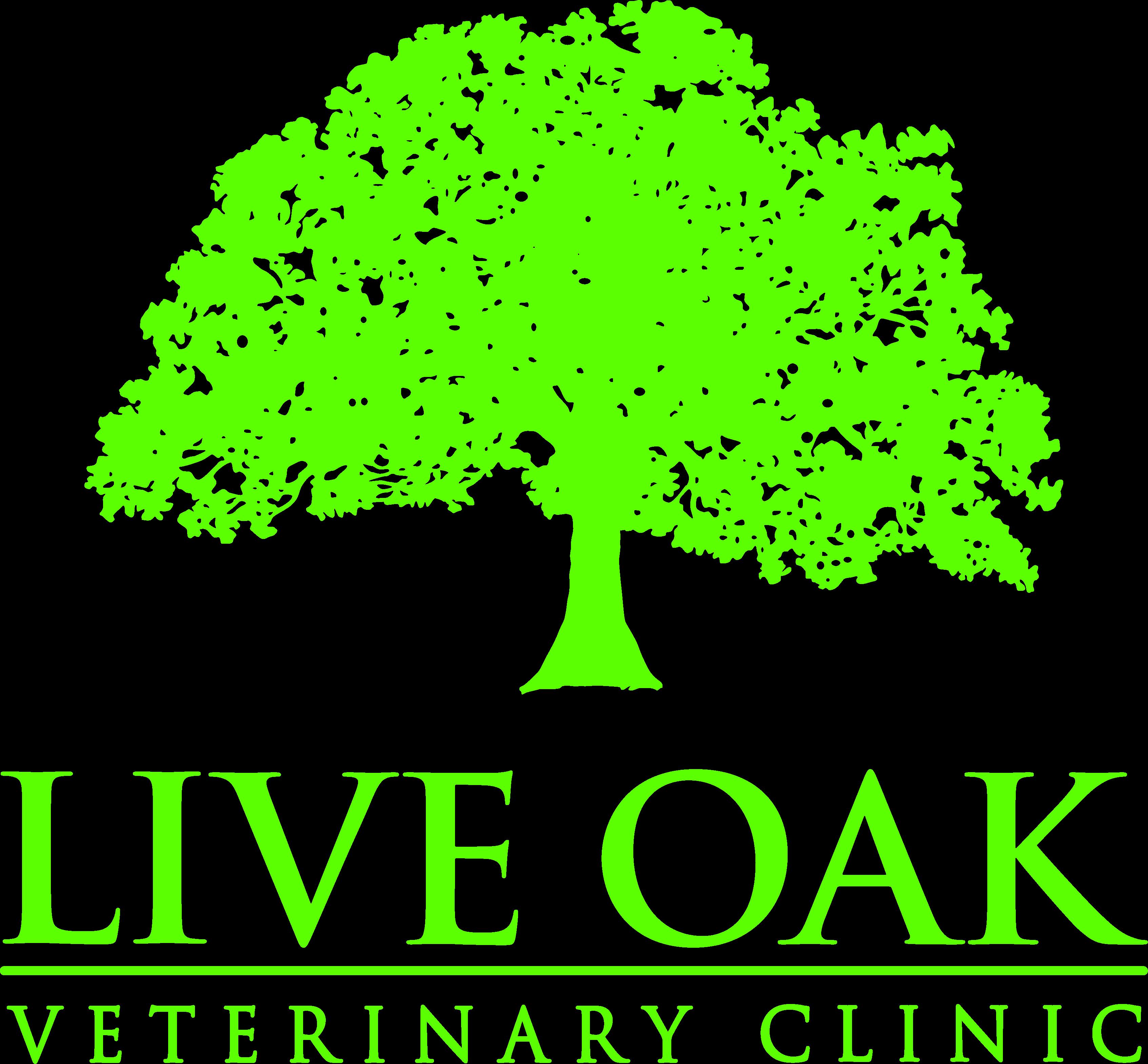 Live Oak Veterinary Clinic Veterinarian In Jacksboro Tx